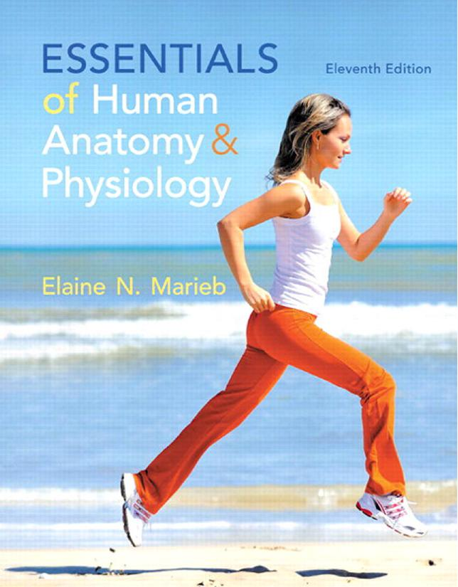 Essentials of Human Anatomy & Physiology (11th Edition)