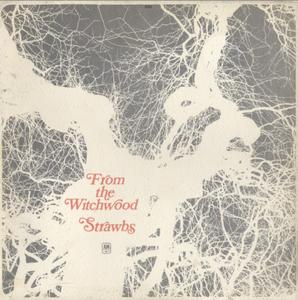 Strawbs ‎- From The Witchwood (1971) A&M Records/SAMLZ-934437 - NZ 1st Pressing - LP/FLAC In 24bit/96kHz
