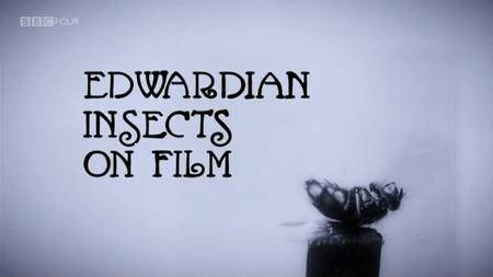 BBC - Edwardian Insects on Film (2013)