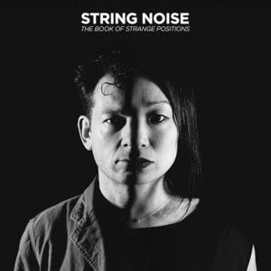 String Noise - The Book of Strange Positions (2015)