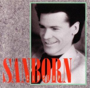 David Sanborn - Close-Up (1988)