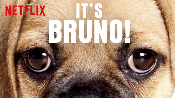 It's Bruno! (2019) Season 1