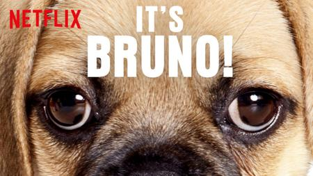 It's Bruno! (2019) Season 1