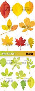 Stock Vector - Leaves