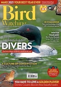 Bird Watching UK - January 2021