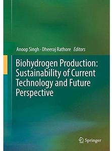 Biohydrogen Production: Sustainability of Current Technology and Future Perspective [Repost]