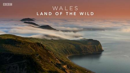 BBC - Wales: Land of the Wild (2019)
