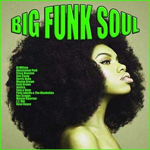 VA - Big Funk Soul (2019)