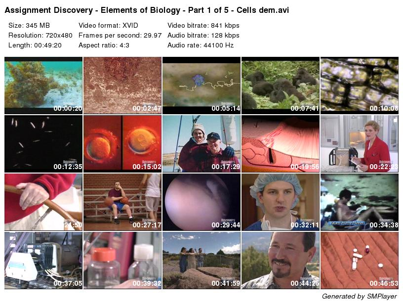 Assignment Discovery - Elements of Biology -                                                       Cells