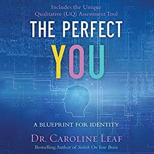 The Perfect You: A Blueprint for Identity [Audiobook]