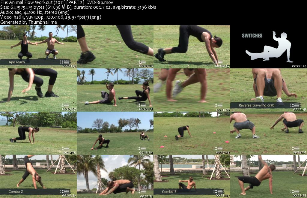 Animal Flow Workout (2011)