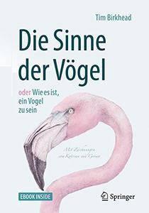 Die Sinne der Vögel oder Wie es ist, ein Vogel zu sein: Mit Zeichnungen von Katrina van Grouw