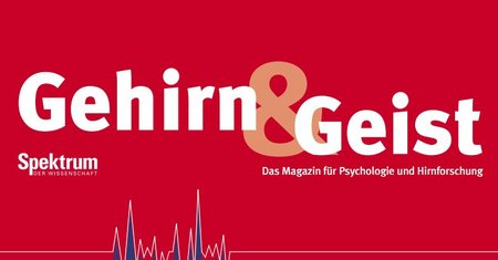 Gehirn und Geist Magazin Jahr 2003