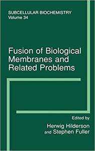 Fusion of Biological Membranes and Related Problems
