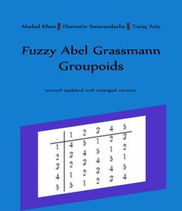 Fuzzy Abel Grassmann Groupoids: second updated and enlarged version