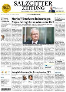 Salzgitter Zeitung - 16. April 2019
