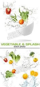 Vegetable & water splash