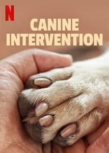 Canine Intervention S01E06