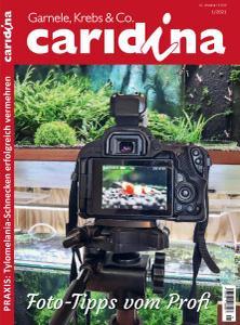 Caridina - Nr.1 2021