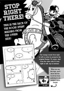 Digital Manga-Storm Fairy 2020 Hybrid Comic eBook