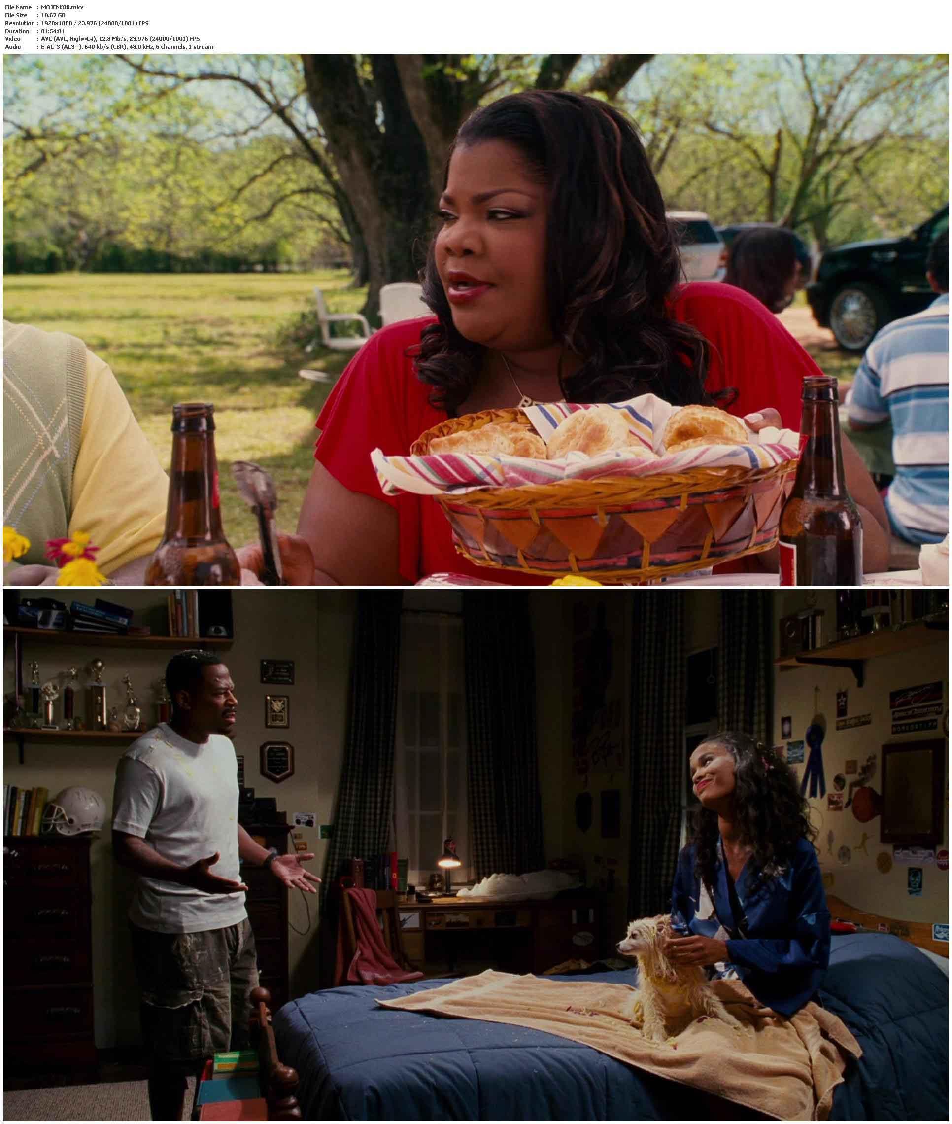 Welcome Home, Roscoe Jenkins (2008)