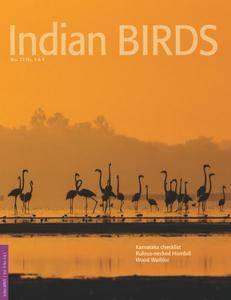 Indian Birds - November 14, 2016