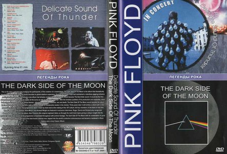 Pink Floyd - Delicate Sound Off Thunder & The Dark Side Of The Moon (2xDVD-5) 2003