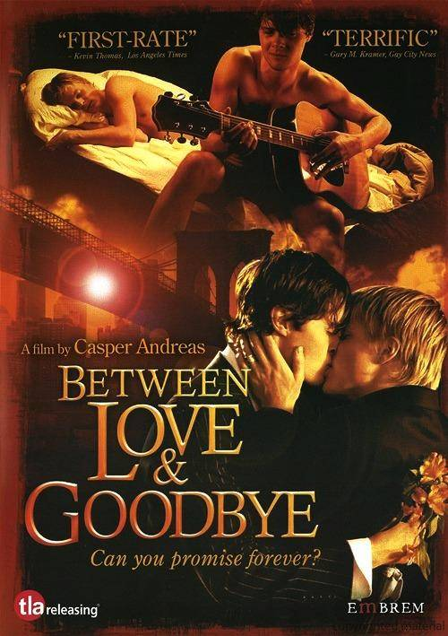 Between Love and Goodbye (2008)