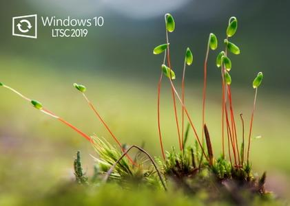 Windows 10 Enterprise LTSC 2019 version 1809 build 17763.774