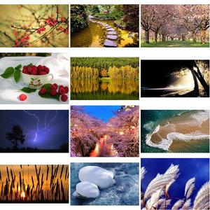 Wallpapers Nature. Set 24