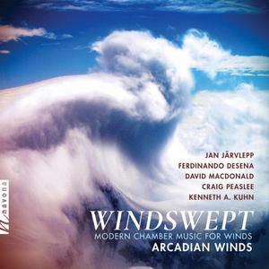 Clark Matthews, Janet Underhill, Jennifer Slowik, Rane Moore and Vanessa Holroyd - Windswept Modern Chamber Music for Winds
