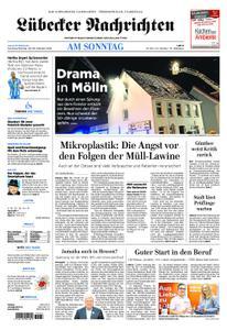 Lübecker Nachrichten Bad Schwartau - 28. Oktober 2018