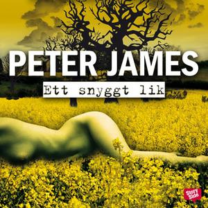 «Ett snyggt lik» by Peter James