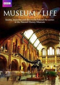 BBC - Museum of Life (2010)