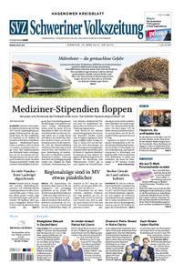 Schweriner Volkszeitung Hagenower Kreisblatt - 16. April 2019