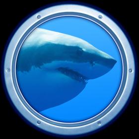 Sharks 3D 1.3.1