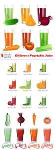 Vectors - Different Vegetable Juice