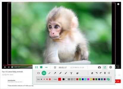 Apeaksoft Screen Recorder 1.2.32 Multilingual