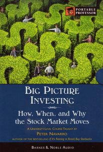 Big Picture Investing (Modern Scholar)