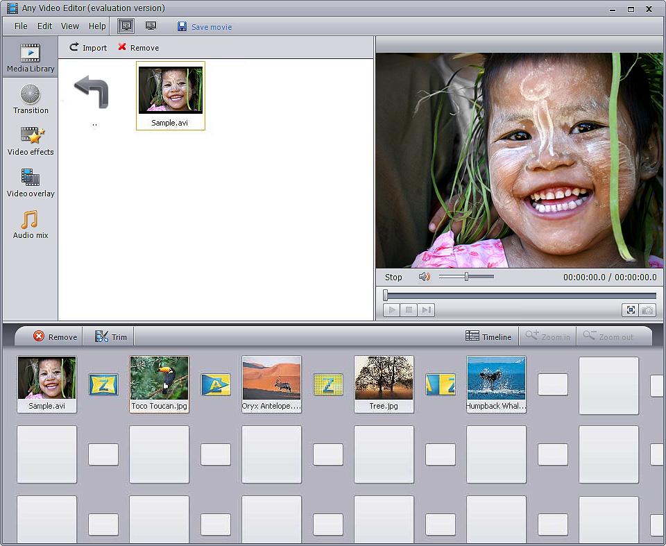 Any Video Editor 1.3.6.1