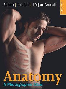 Anatomy: A Photographic Atlas 8th Edition  (Repost)