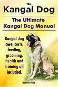 The Kangal Dog. The Ultimate Kangal Dog Manual. Kangal dog care, costs, feeding, grooming, health and training all included.