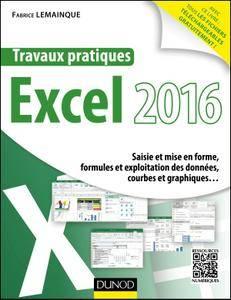 Travaux pratiques avec Excel 2016 : Saisie et mise en forme, formules et exploitation des données, courbes et graphiques...
