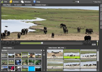 Fast Video Cataloger v6.16