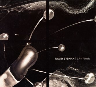 David Sylvian - Camphor (2002) {2CD Set Virgin Records Limited Edition CDVEX962}