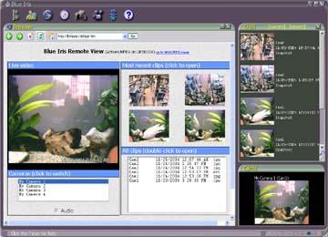 Perspective Software Blue Iris 2.55.4