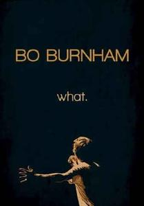 Bo Burnham: what. (2013)