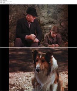 Lassie Come Home (1943)