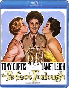 The Perfect Furlough (1958)