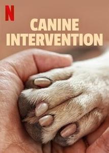 Canine Intervention S01E01